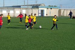 "Campionato Provinciale calcio a 5 ""Sport&Go"" Under 10"